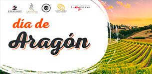 Ir a Día de Aragón