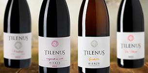 Ir a Tilenus - D.O. Bierzo