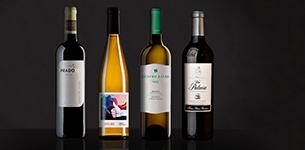 Ir a Disfruta de un excelente descuento en esta selección de vinos