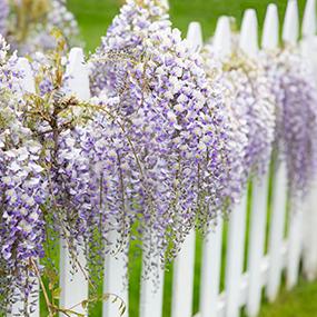 Decoraci n y accesorios jard n y terrazas for Accesorios para jardin