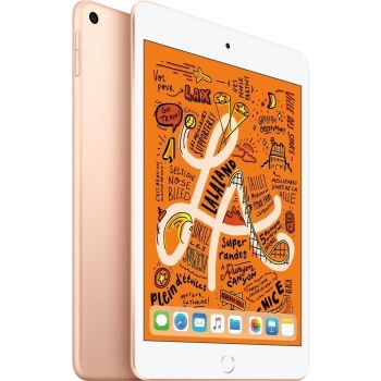 Ipad Mini - 7,9 256go Wifi - O