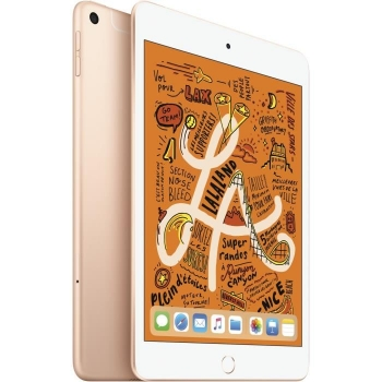 Ipad Mini - 7,9 256go Wifi + Cellular - O