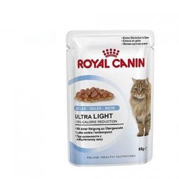 Comida y accesorios para gato Royal canin - Carrefour.es