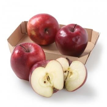 Manzana roja ecológica bandeja 4 ud 600 g