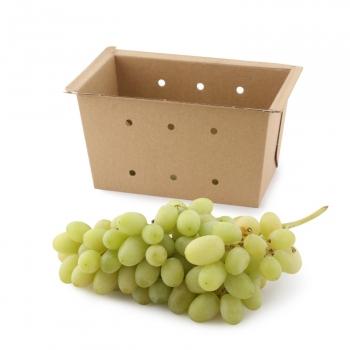 Uva blanca sin pepitas Carrefour bandeja 500 g