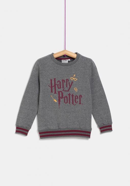 Umjereno Gubitak Zemlja Sudadera Harry Potter Zara Tedxdharavi Com