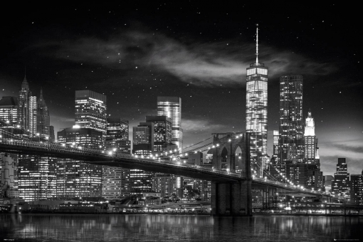 Maxi Poster New York Freedom Tower B And W