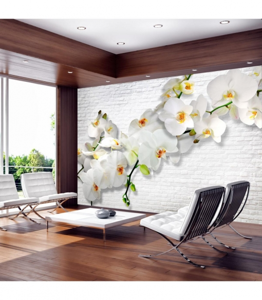 Fotomural - Orquídeas En La Pared , Tamaño - 100x70