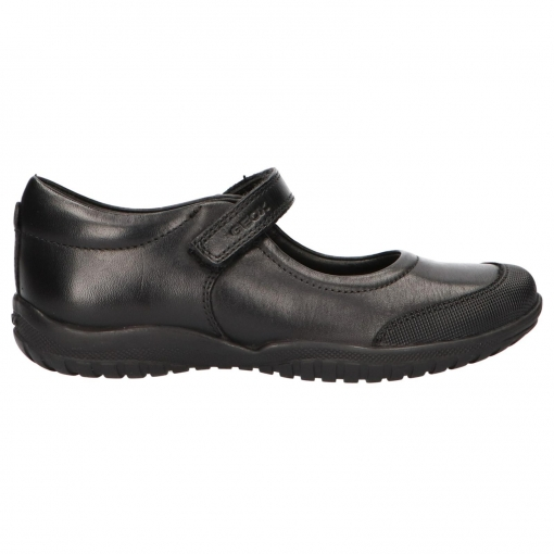 zapatos geox outlet online india