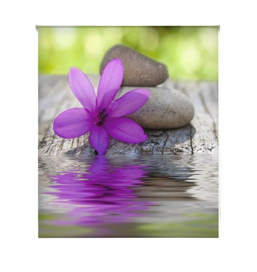 Estor Enrollable Happystor Estampado Digital Zen Hscz4502 165x180