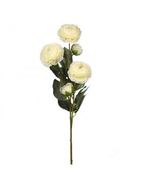 Vara De Ranuculo 73cm .01 Blanco