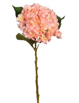 Vara Hortensia 50cm .06 Rosa