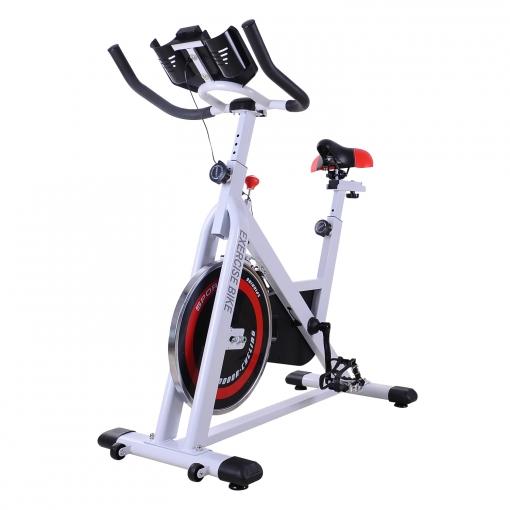 manual bicicleta estatica bh fitness