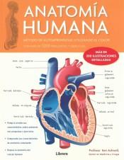 Anatomia Humana (corazón V1)
