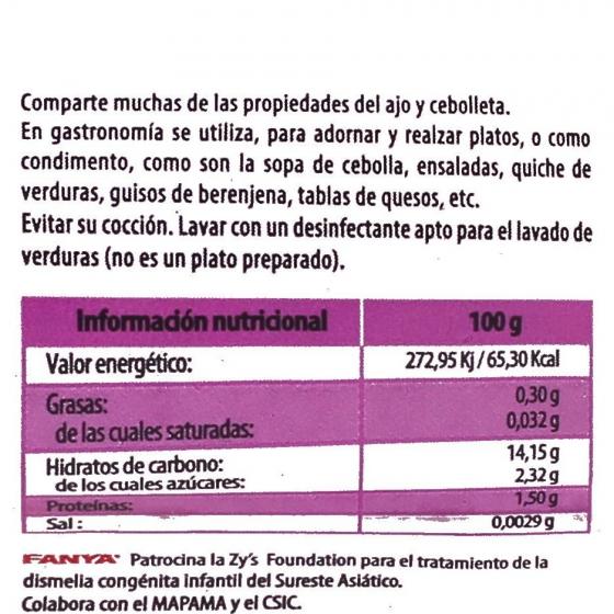 Germinado de cebolla Fanya bandeja 95 g - 4