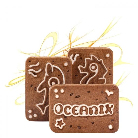 Galletas con pepitas de chocolate Oceanix Tosta Rica Cuétara 480 g. - 1