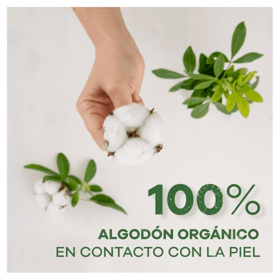 Compresas de noche ultra con alas Cotton protection Ausonia 9 ud. - 4