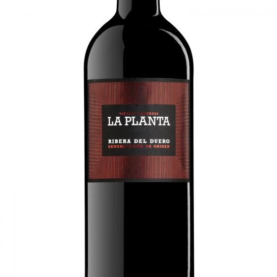 Vino D.O. Ribera del Duero tinto roble La Planta 75 cl. - 1