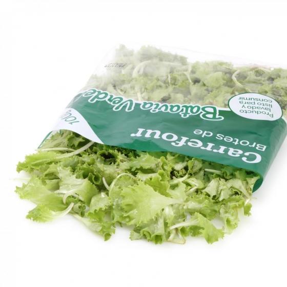 Brote batavia verde Carrefour bolsa 100 g