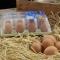 Huevos medianos M