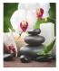 Estor Enrollable Happystor Estampado Digital Zen Hscz5911 195x180