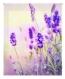 Estor Enrollable Happystor Estampado Digital Paisajes Hsp93002 135x250