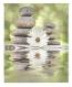 Estor Enrollable Happystor Estampado Digital Zen Hscz05359 160x250