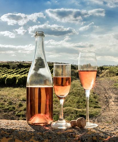 Rosados en Rioja