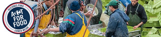 66 lonjas de todo el territorio nacional nos sirven a diario el pescado más fresco