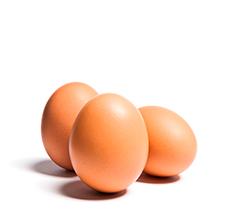 Huevos Frescos Camperos