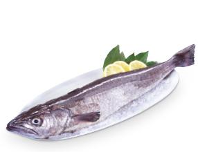 Merluza 1-2 kg a 6,95€/kg